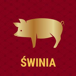 Horoskop chiński znak zodiaku świnia