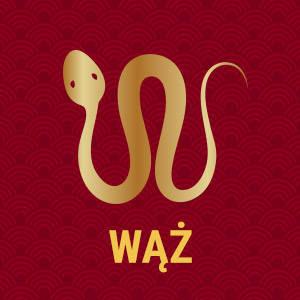 Horoskop chiński znak zodiaku wąż